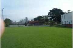 campo-3